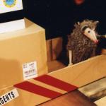 El Ratolí viatger (L'Estaquirot Teatre) - Foto 5 baixa