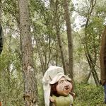 Mes enlla del bosc (Campi qui pugui) Foto 1 baixa