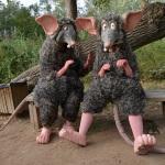 Rats (Campi qui pugui) Foto 2 baixa