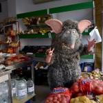 Rats (Campi qui pugui) Foto 5 baixa