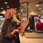 Rats (Campi qui pugui) Foto 6 baixa
