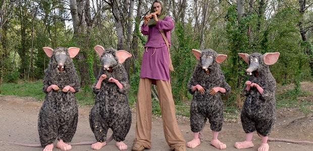 Rats (Campi qui pugui)