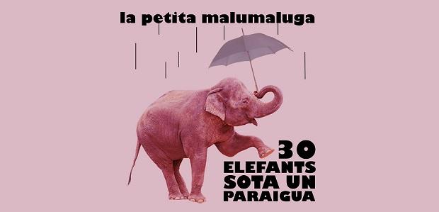 30 elefants sota un paraigua